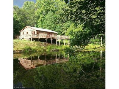Mills River Single Family Home For Sale: 59 Lofty Pine Lane