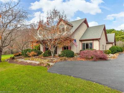 Asheville Single Family Home For Sale: 904 New Haw Creek Road