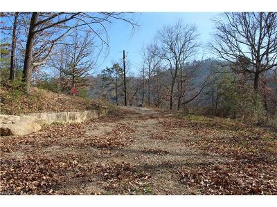 Asheville Residential Lots & Land For Sale: 194 Baird Cove Lane #2