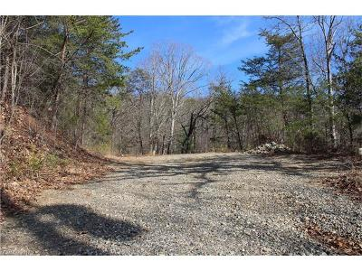 Asheville Residential Lots & Land For Sale: 191 Baird Cove Lane #10