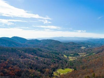 Asheville Residential Lots & Land For Sale: 99999 Ridgehaven Drive