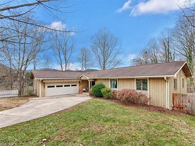 Asheville Single Family Home For Sale: 17 Beaver Point Park