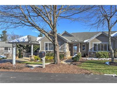 Hendersonville Single Family Home For Sale: 31 Meadow Ridge Lane