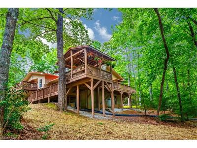 Transylvania County Single Family Home For Sale: 154 Hondah Boulevard