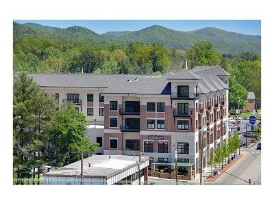 Brevard Condo/Townhouse Under Contract-Show: 29 W French Broad Street #318