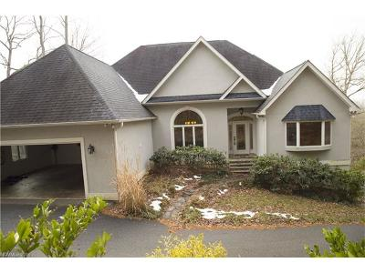 Asheville Single Family Home For Sale: 21 Bees Mountain Drive