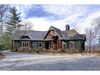Transylvania County Single Family Home For Sale: 554 Whitewater Ridge Road #7