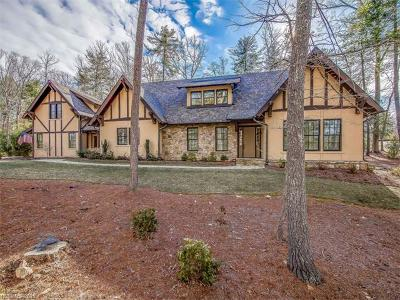 Asheville Single Family Home For Sale: 75 Chauncey Circle