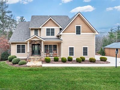 Asheville Single Family Home For Sale: 95 Oak Hollow Drive