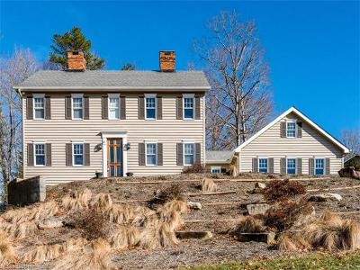Asheville Single Family Home For Sale: 166 Skyview Circle