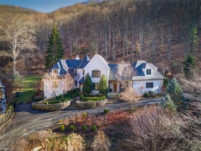 Asheville Single Family Home For Sale: 400 Lynn Cove Road