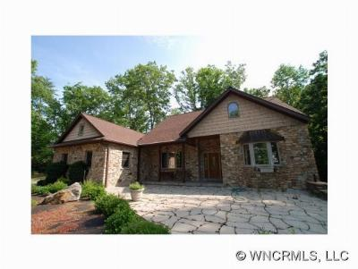 Mills River Single Family Home For Sale: 5674 Old Haywood Road