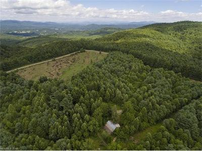 Hendersonville Residential Lots & Land For Sale: 4151 Lot B Jeter Mountain Road