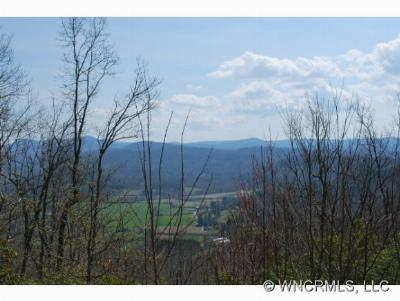 Boyd, Little River, Penrose, Pisgah Forest Residential Lots & Land For Sale: 19 Hawkins Hollow Road #19