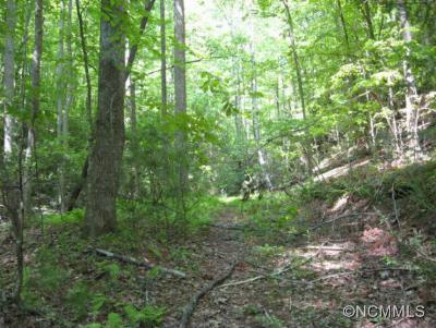Pisgah Forest Residential Lots & Land Under Contract-Show: 00 Valley Lane