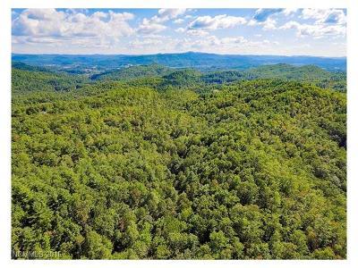 Boyd, Little River, Penrose, Pisgah Forest Residential Lots & Land For Sale: 290 Pelletier