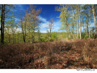 Buncombe County, Haywood County, Henderson County, Jackson County, Madison County, Polk County, Rutherford County, Transylvania County Residential Lots & Land For Sale: 10 Red Maple Lane #10
