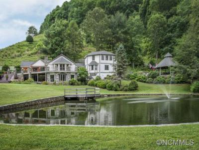 Marshall Single Family Home For Sale: 1761 Bone Camp Road