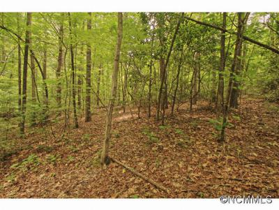Hendersonville Residential Lots & Land For Sale: 7 Western Red Bird Drive #7