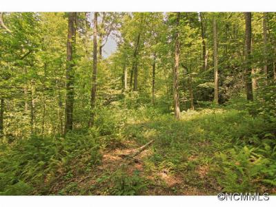 Hendersonville Residential Lots & Land For Sale: 5 Western Red Bird Drive #5