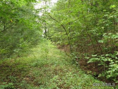 Pisgah Forest Residential Lots & Land For Sale: Lot 3, Gardner Lane