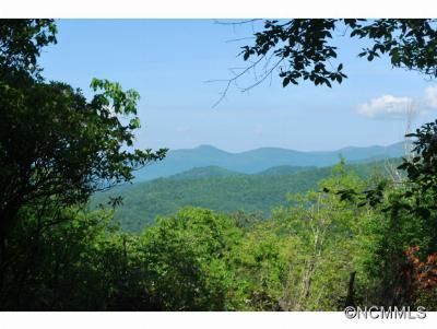 Pisgah Forest Residential Lots & Land For Sale: Lot 10 Hollydale #10