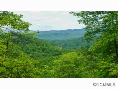 Pisgah Forest Residential Lots & Land For Sale: Lot 12 Off Hollydale #12