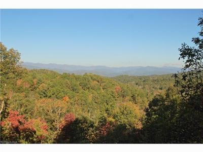 Buncombe County, Haywood County, Henderson County, Jackson County, Madison County, Polk County, Rutherford County, Transylvania County Residential Lots & Land For Sale: 40 Falls View Drive #Lot 40