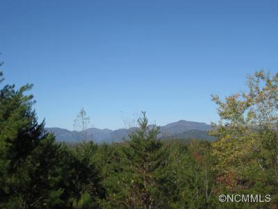 Rutherfordton Residential Lots & Land For Sale: 360 Hidden Hills Drive