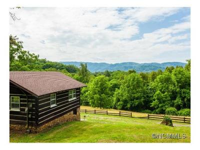Weaverville Single Family Home For Sale: 157 Dogwood Drive