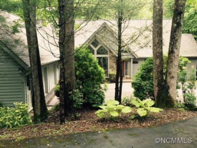 Transylvania County Single Family Home For Sale: 35 Riverview Court
