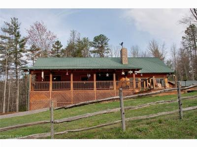 Transylvania County Single Family Home For Sale: 288 Hard To Find Drive