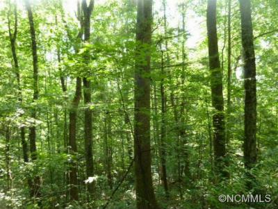 Green Mountain NC Residential Lots & Land Closed: $84,349