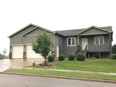 Dickinson Single Family Home For Sale: 1035 Wahl St