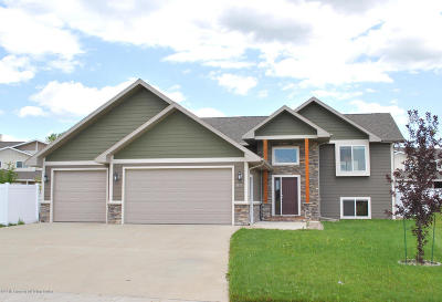 Dickinson Single Family Home For Sale: 1977 Yellowstone Cir