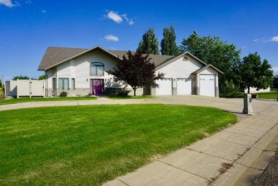 Dickinson Single Family Home For Sale: 1155 7th St E