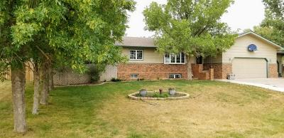 Dickinson Single Family Home For Sale: 1702 14th St SW