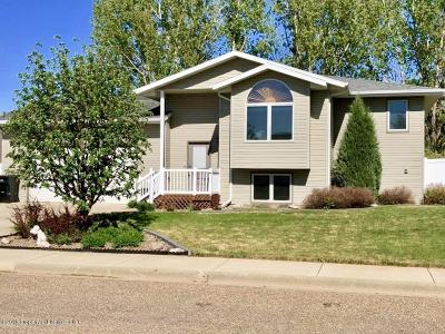 Dickinson Single Family Home For Sale: 1376 2nd Ave E