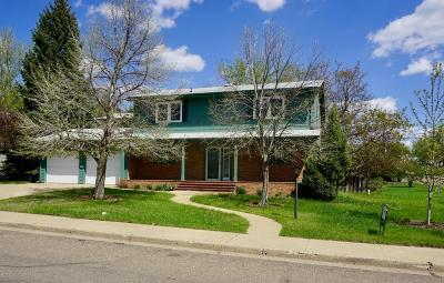 Dickinson Single Family Home For Sale: 842 7th Ave W