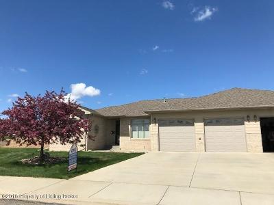 Dickinson Single Family Home For Sale: 1530 Sagebrush Ct