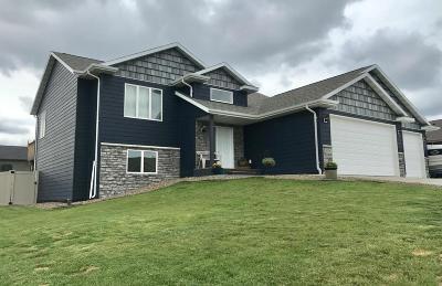 Dickinson Single Family Home For Sale: 959 Pheasant Run Avenue