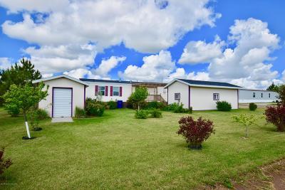 Dickinson Single Family Home For Sale: 874 Palomino Lane
