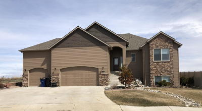 Dickinson Single Family Home For Sale: 996 Mustang
