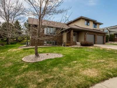 Bismarck Single Family Home For Sale: 523 Juniper Dr