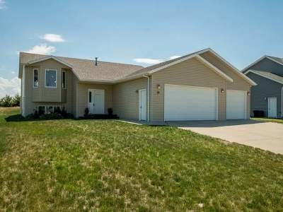 Lincoln Single Family Home For Sale: 33 McGinnis Way