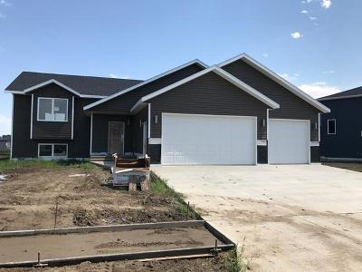 Single Family Home For Sale: 3717 Meridian Dr