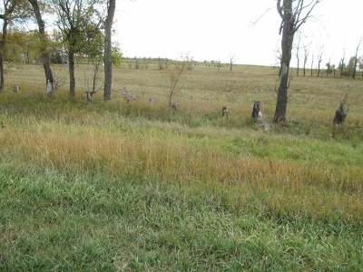 Hazen ND Residential Lots & Land For Sale: $60,000
