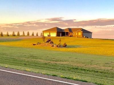 Bismarck Single Family Home For Sale: 2303 80 St NE