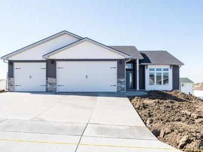 Bismarck Single Family Home For Sale: 3817 Lone Peak Dr
