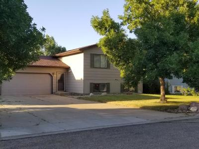 Lincoln Single Family Home For Sale: 80 Custer Dr